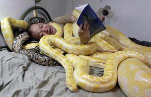 Снятся змеи к чему