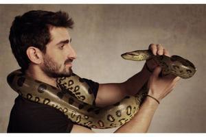 Контактировать со змеей во сне