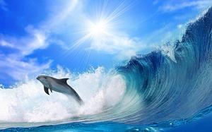 Значения снов о цунами