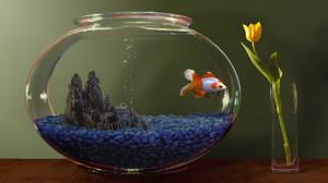 Как растолковать сон про аквариум