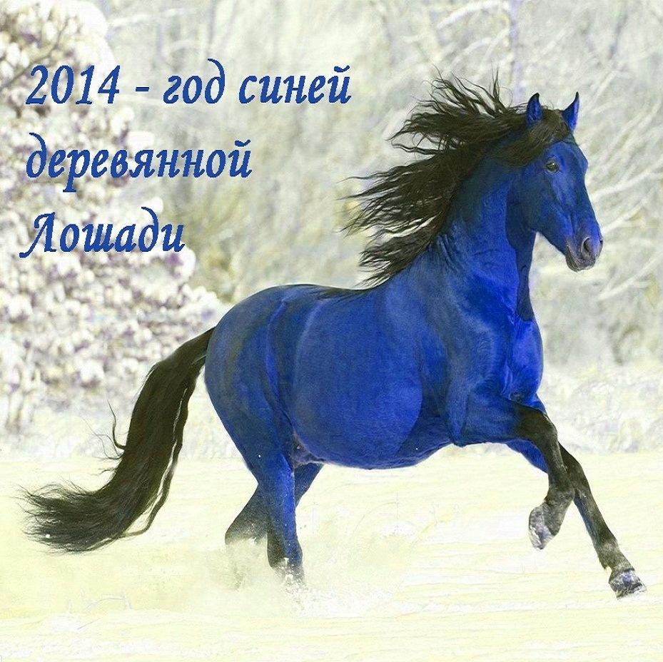 поздравление кто рожден в год лошади такие некомпетентные работники