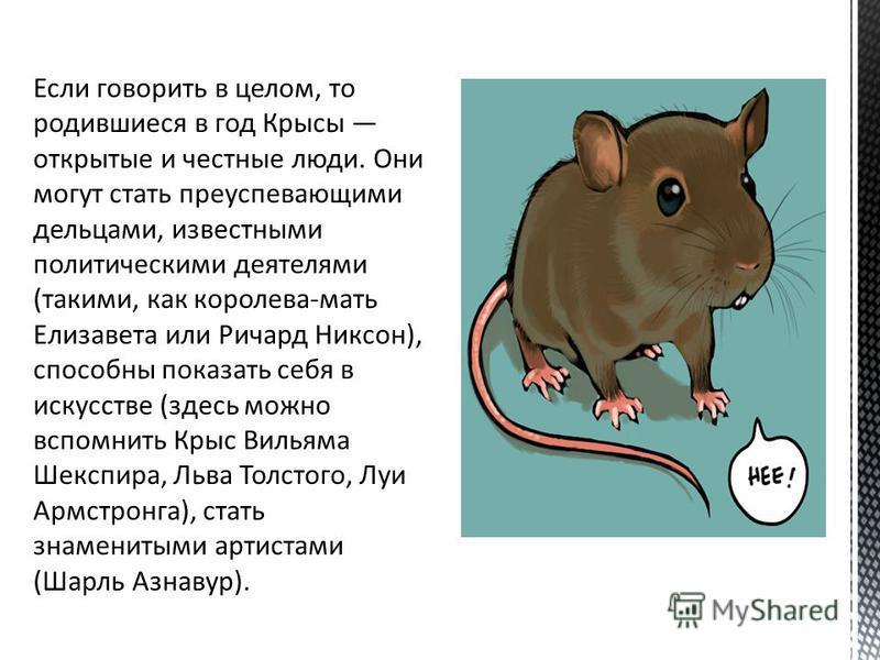 Крыса сообразительна, образованна, стремится к успеху в социуме и материальному благополучию.