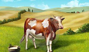 Особенности сна про корову