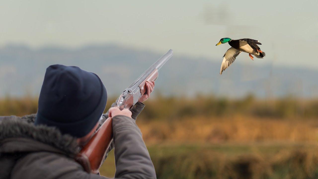Житель Камчатки погиб от неосторожного выстрела во время охоты на уток