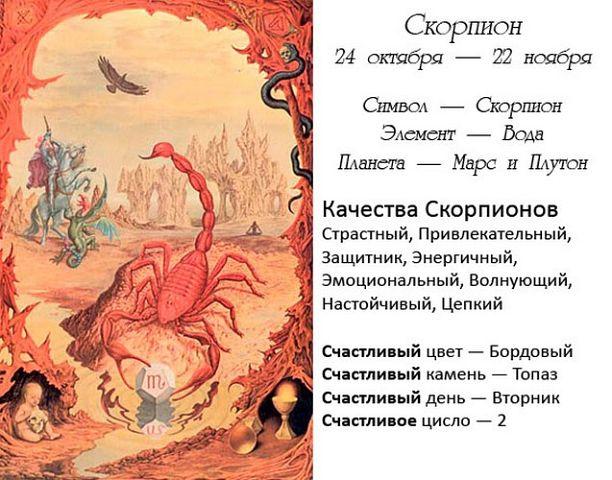 Характеристика человека родившегося под знаком зодиака скорпион