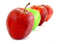 Что означает цветущее дерево яблони