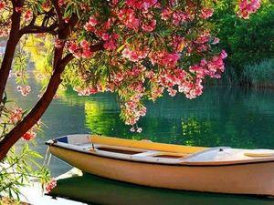 Значение сна про лодку