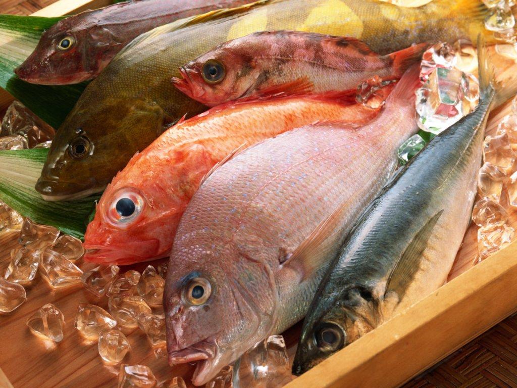 К чему снятся аквариумные рыбки: толкование значения сна по различным сонникам для мужчин и женщин новые фото