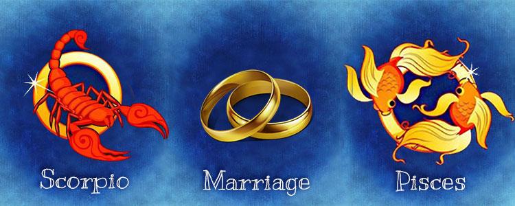 Гороскоп совместимости скорпиона и рыб в любви и браке, дружбе и деловой сфере – плюсы, минусы.