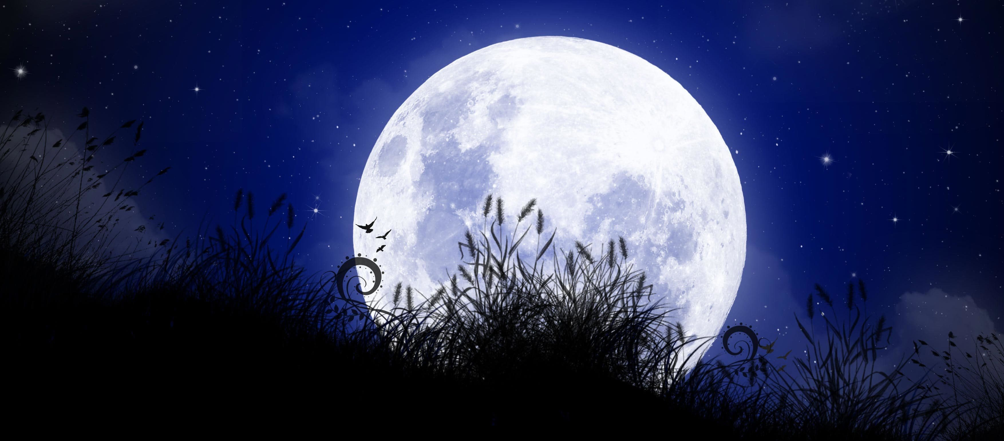 Видеть НЛО во сне — значение сонника