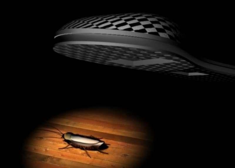 Сонник: убивать тараканов