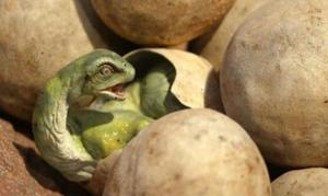 Яйца динозавра во сне