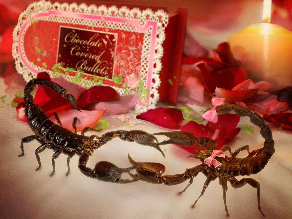 картинки с добрым утром скорпиону по гороскопу тела центре