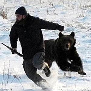 К чему снится медведь, нападающий на вас?