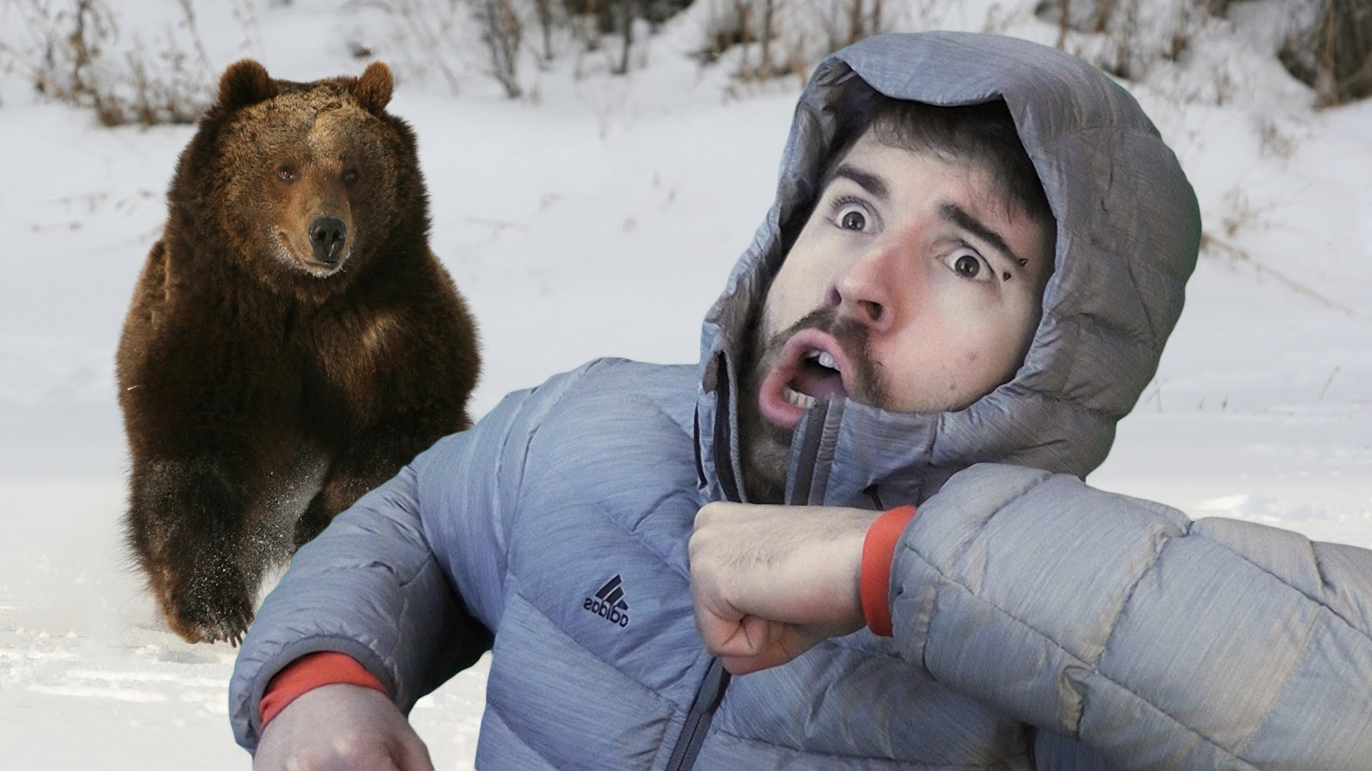 Картинка мужика с медведем