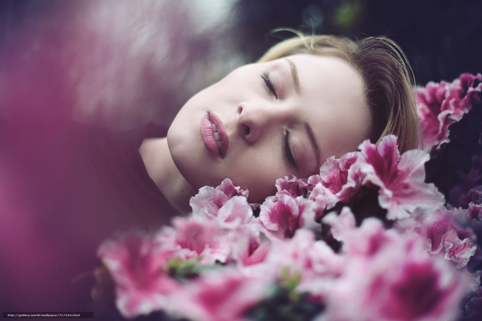 Если во сне вы срываете цветы, чтобы составить из них букет, – в реальной жизни этот сон означает ваше приобщение к знанию и осмыслению мира.