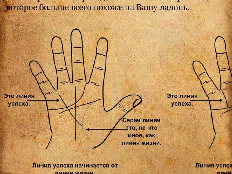 Фотодизайн для ногтей. Купить оптом фотодизайн
