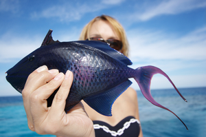 Беременной снится покупать рыбу 99